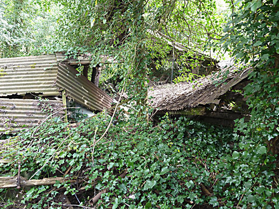 Abandoned Derelict Sawmill Cooksbridge Near Lewes Sussex